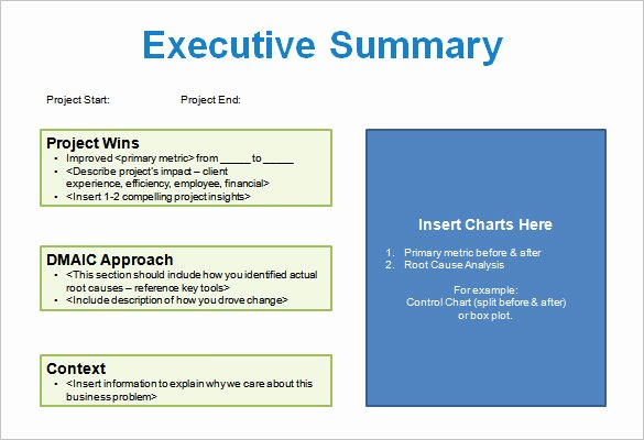 Project Overview Presentation Template Project Storyboard
