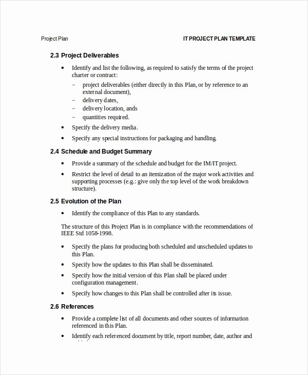 Project Plan Template 12 Free Word Psd Pdf Documents
