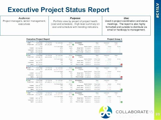 Project Portfolio Report Examples Project Portfolio Status Report Template Excel Management
