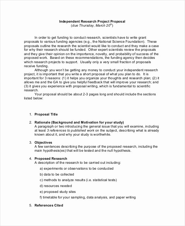 Project Proposal Template 21 Free Word Pdf Psd