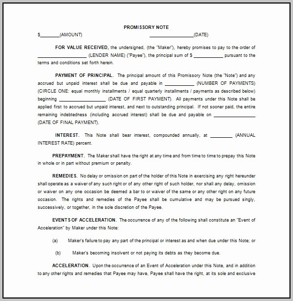 Promissory Note Template Florida Free Template Resume