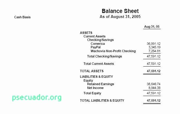 Pto Treasurer Non Profit All Treasurers Report Template