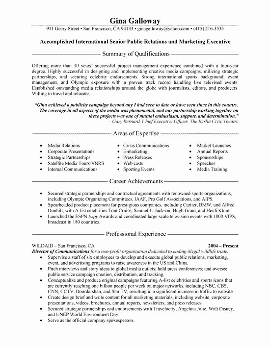 Public Relations Executive Resume Example