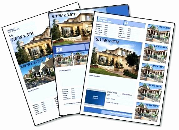 Publisher Real Estate Flyer Template – Cashinghotnichesfo