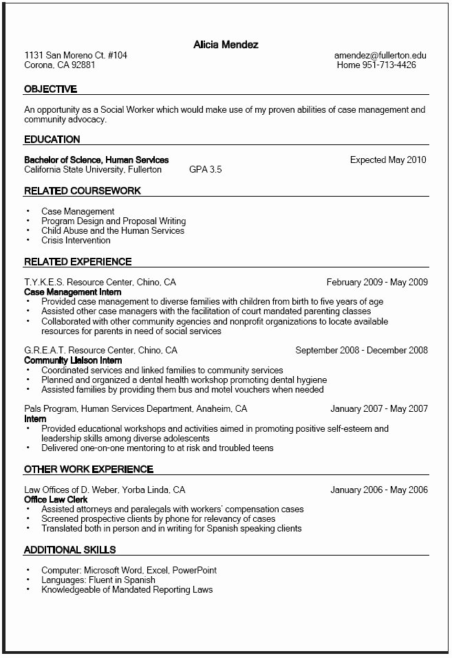Puter Science Resume Template