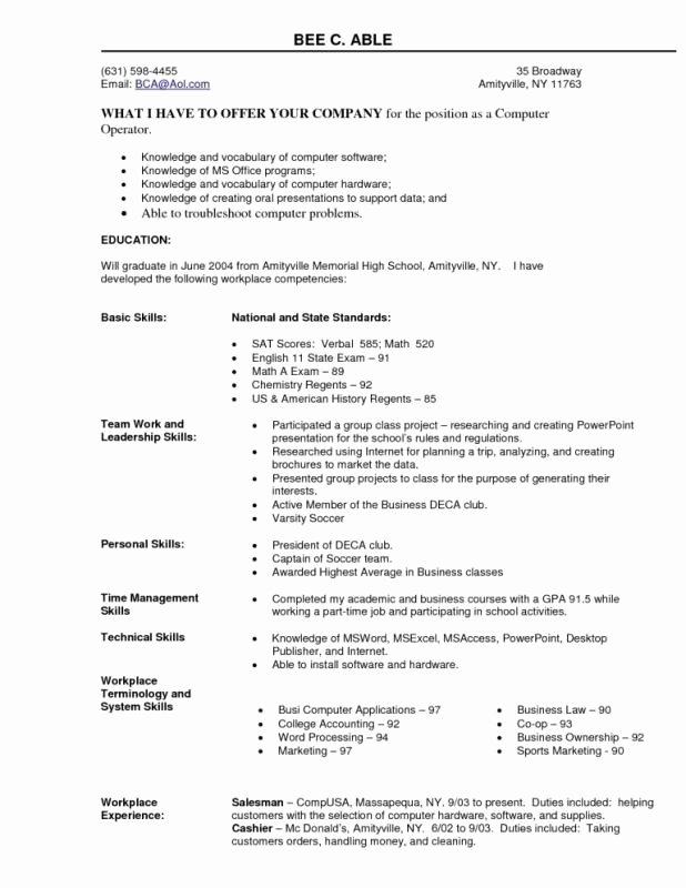 Puter Skills Resume