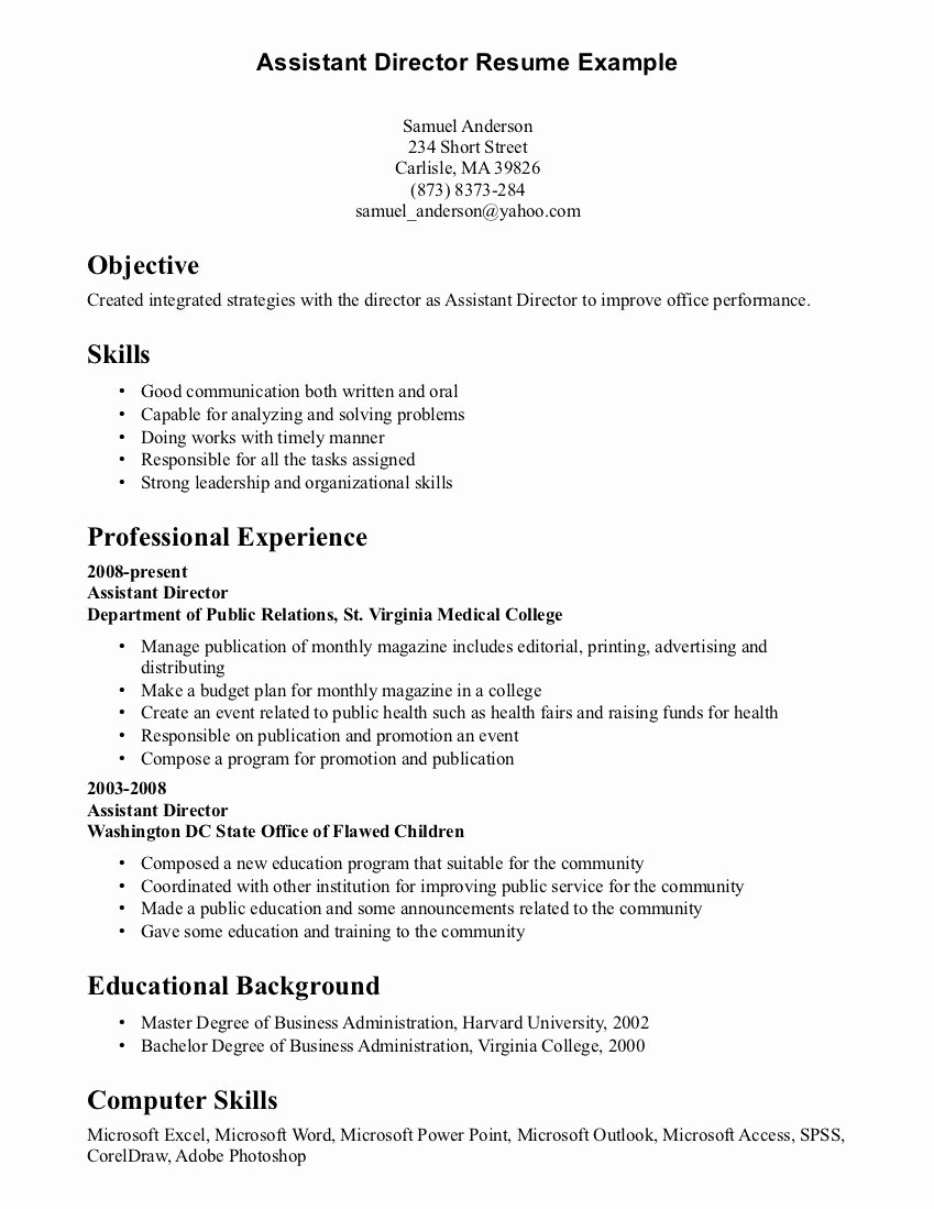Puter Skills Resume Example Template