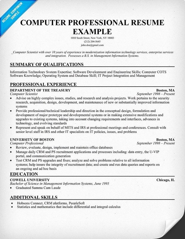 Puter Skills Resume Sample