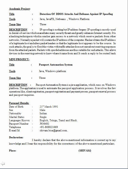 Puter software Engineer Resume