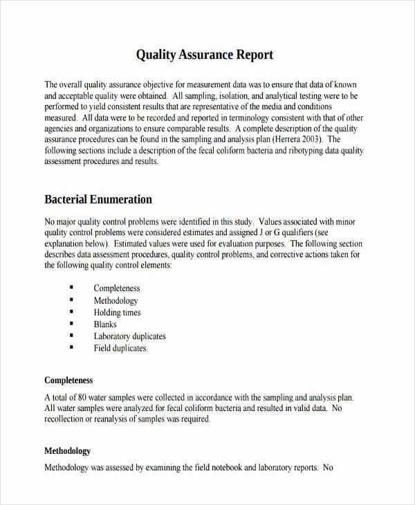 Qa Report format Seatle Davidjoel