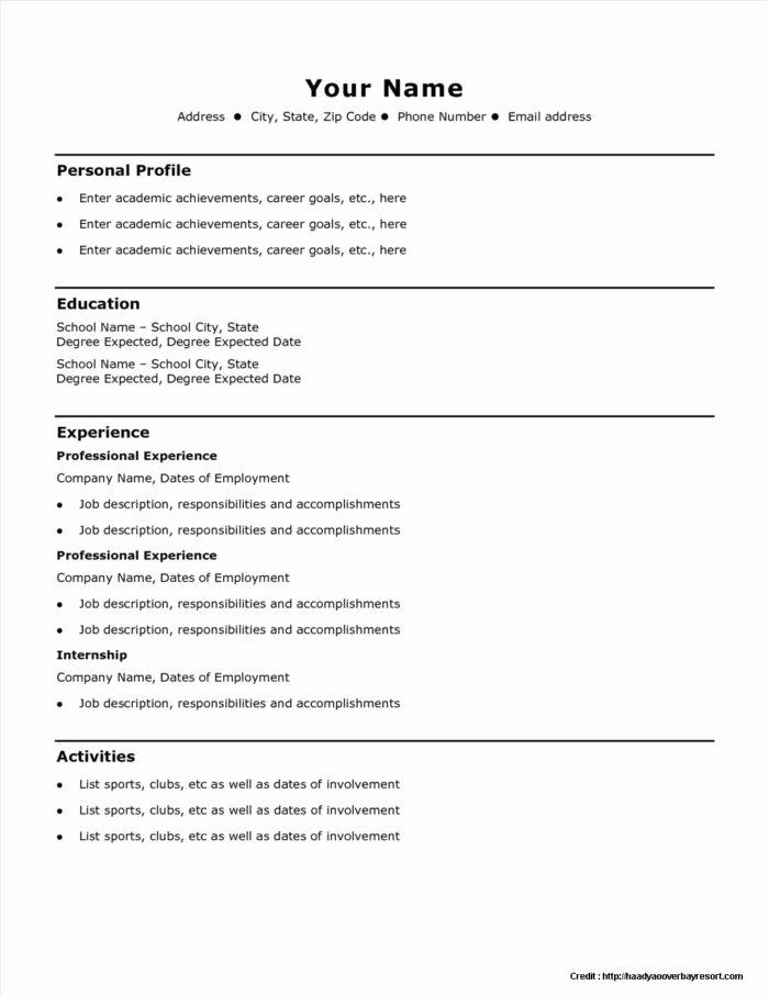 Quick Resume Template Free Resume Resume Examples