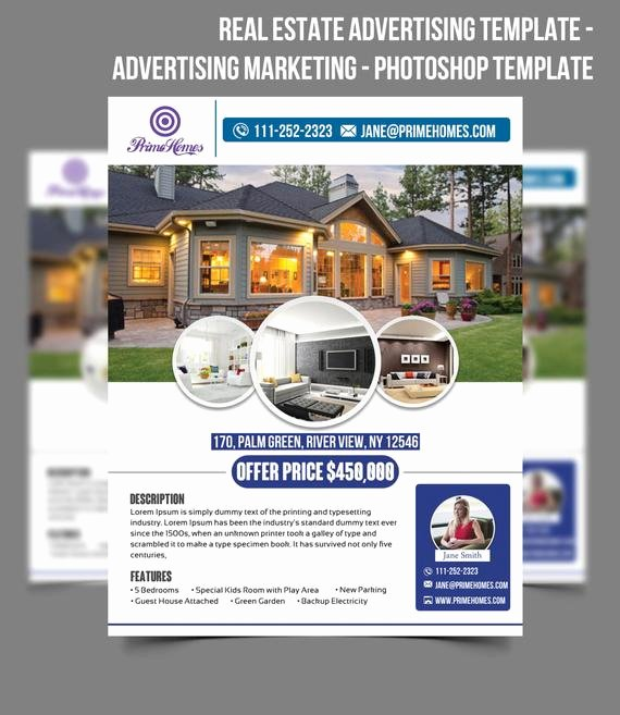 Real Estate Advertising Flyer Template Editable In Microsoft