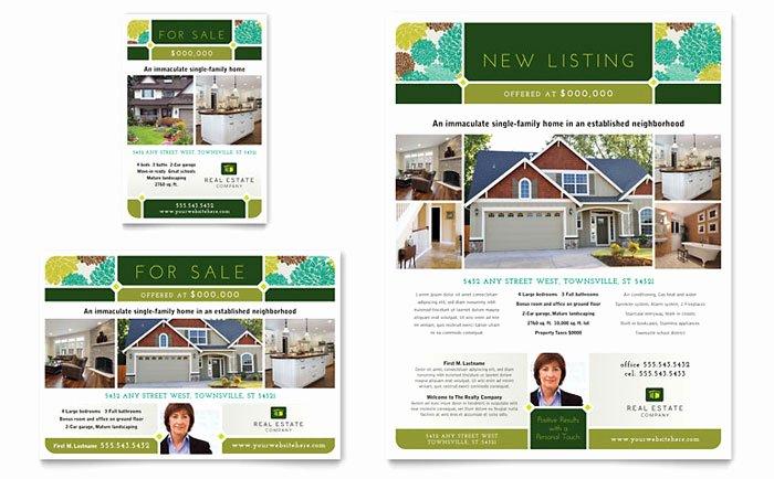 Real Estate Flyer & Ad Template Design