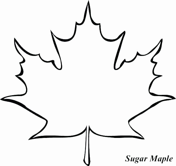 Recycled Easy Leaf Template Free Printable Fall Leaves