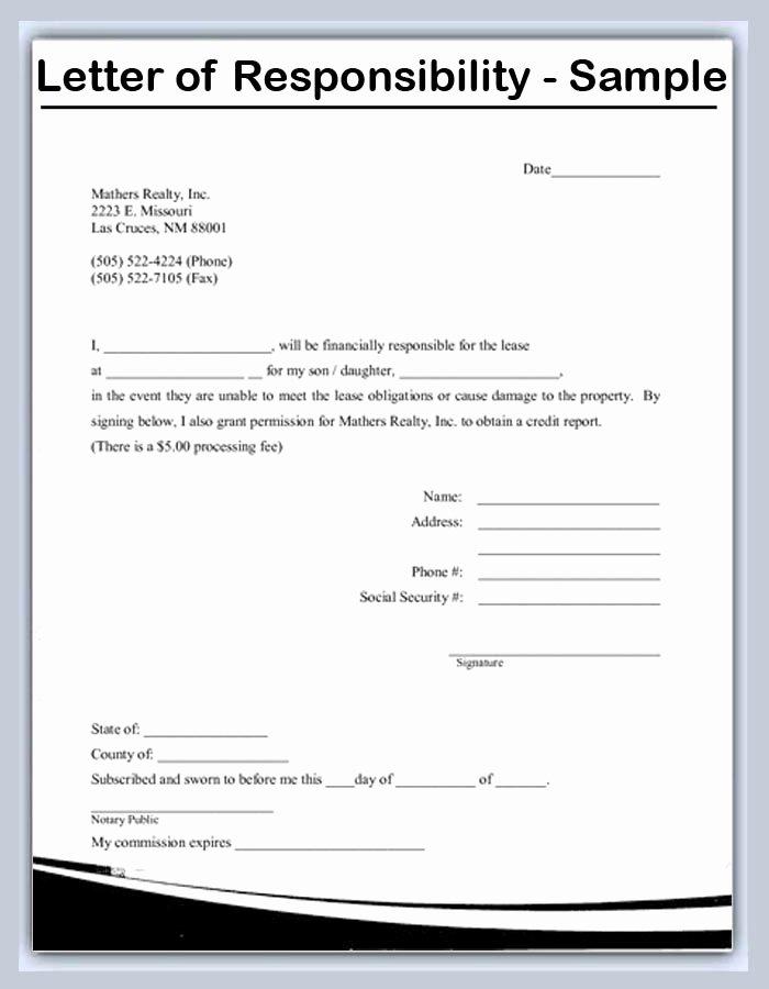Responsibility Letter Letter Template