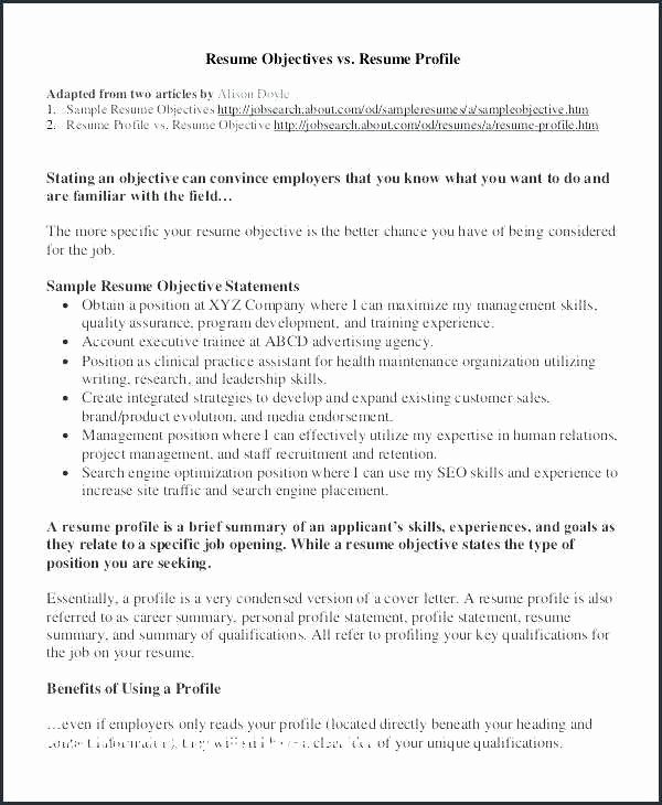 Resume and Linkedin Profile Writing Beautiful Good Profile