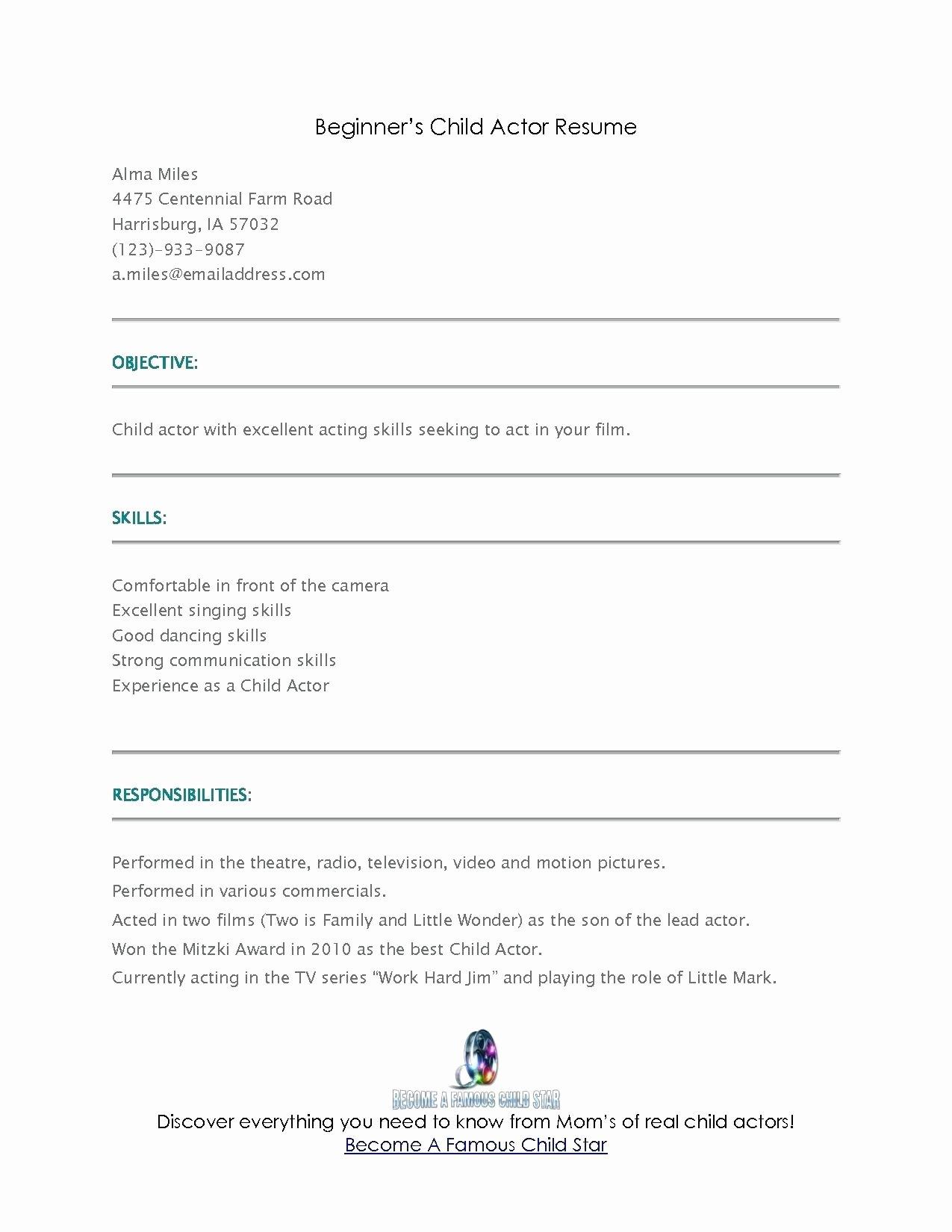 Resume Beginner Resume