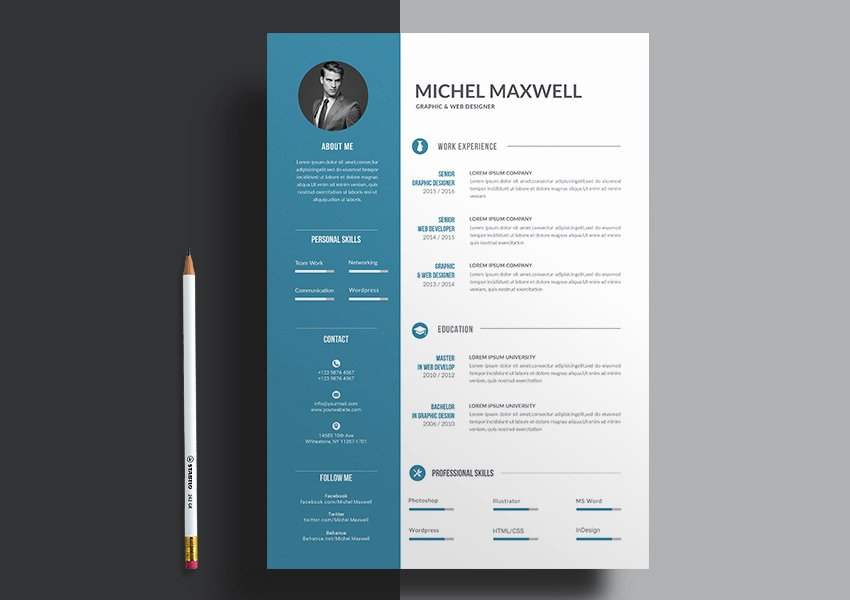 Resume Design Templates 20 Professional Ms Word Resume