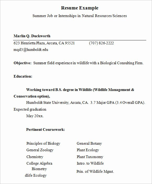 Resume Example for Internship