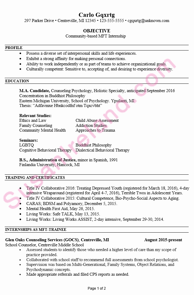 Resume Example for Mft Internship Susan Ireland Resumes