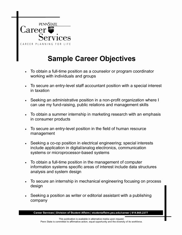 Resume Example Great 10 Objective Resume Examples 2015