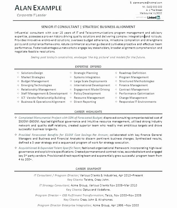 Resume Example It Creative Director Resume Sample Here are