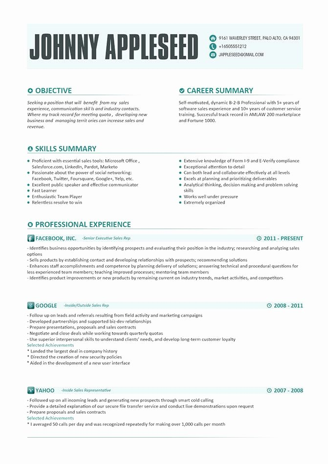 Resume Examples there Was the Following Interesting Ideas