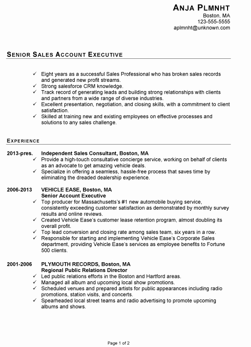 Resume for A Senior Sales Account Executive Susan