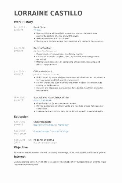 Resume for Bank Teller Elegant Teller Resume Free Template
