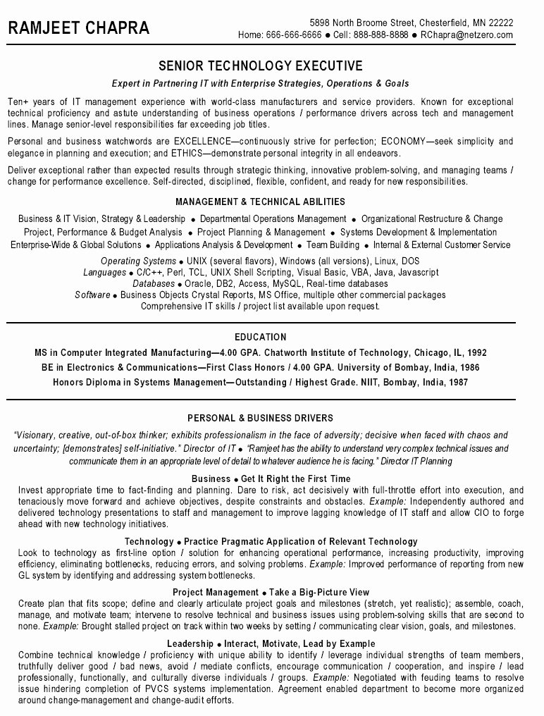 Resume for It Manager Best Resume Gallery