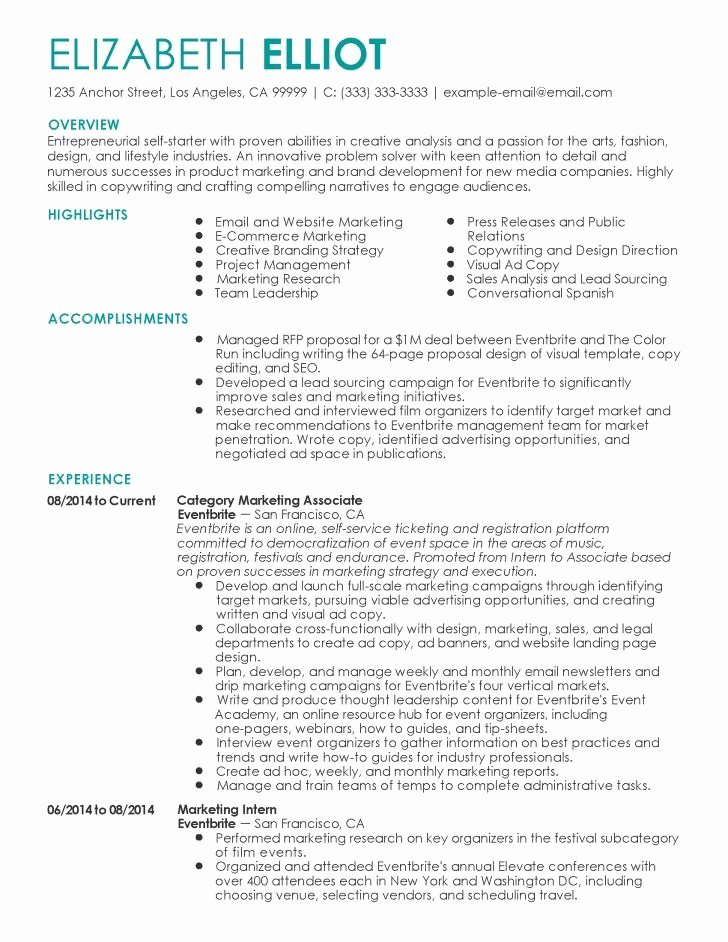 Resume for Self Employed Contractor Best Resume Collection