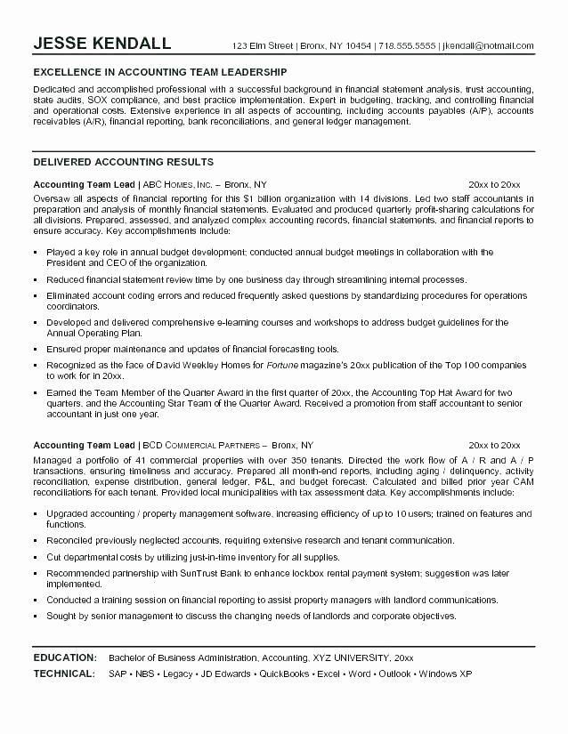 Resume for Team Lead Nyustraus Exaple Resume and