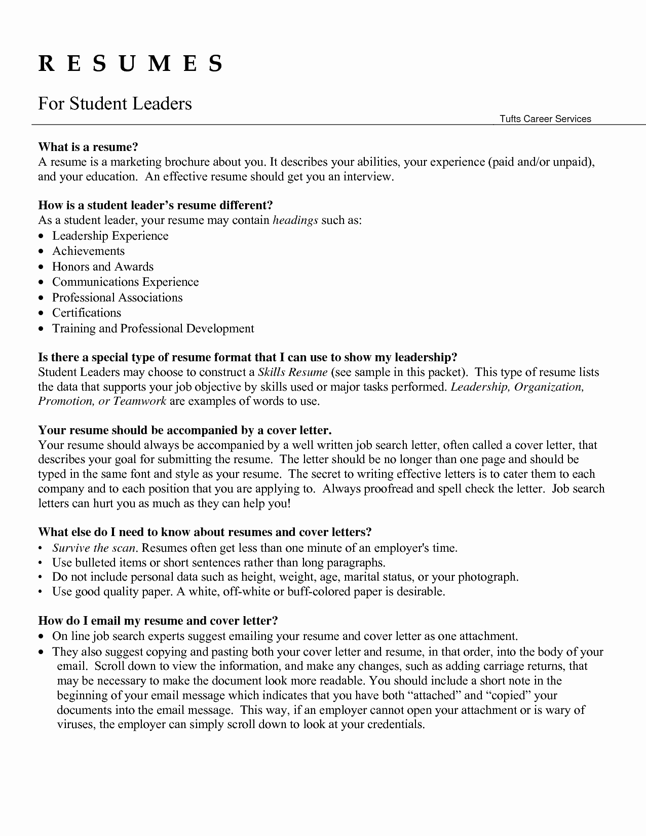 Resume for Warehouse Team Leader Sidemcicek