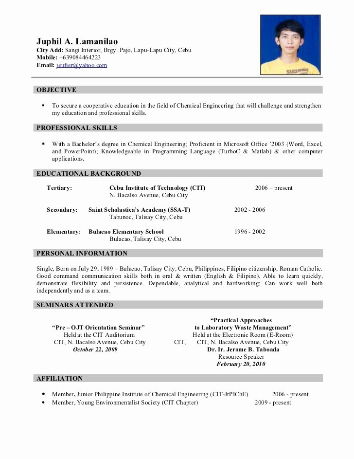 Resume format Examples for Students Samples Resumes