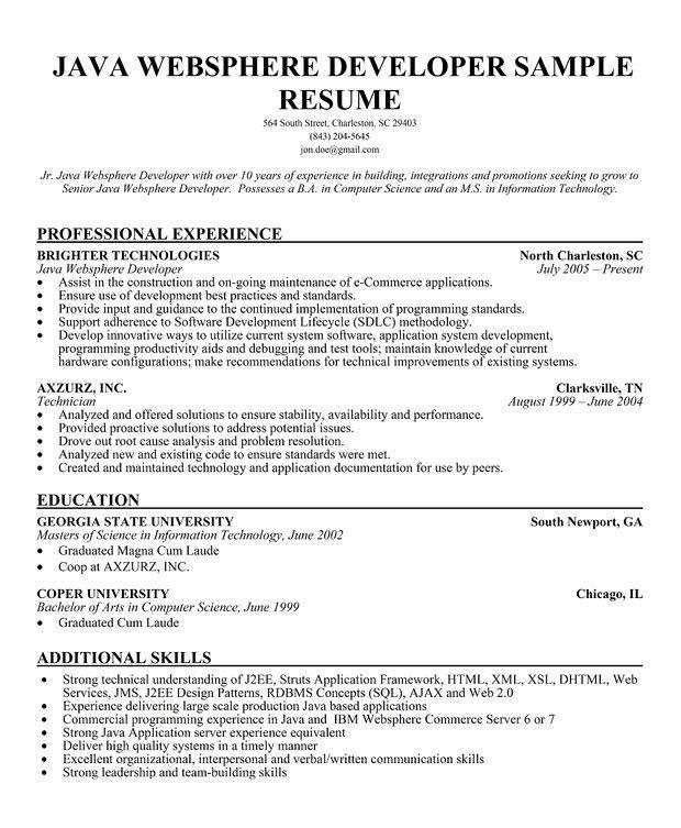 Resume format Resume for Java Developer
