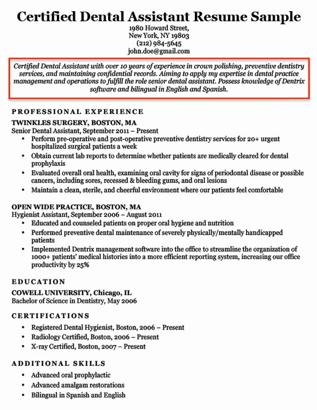 Resume Objective Examples for Students and Professionals