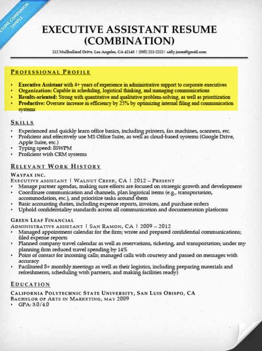 Resume Professional Profile F Resume