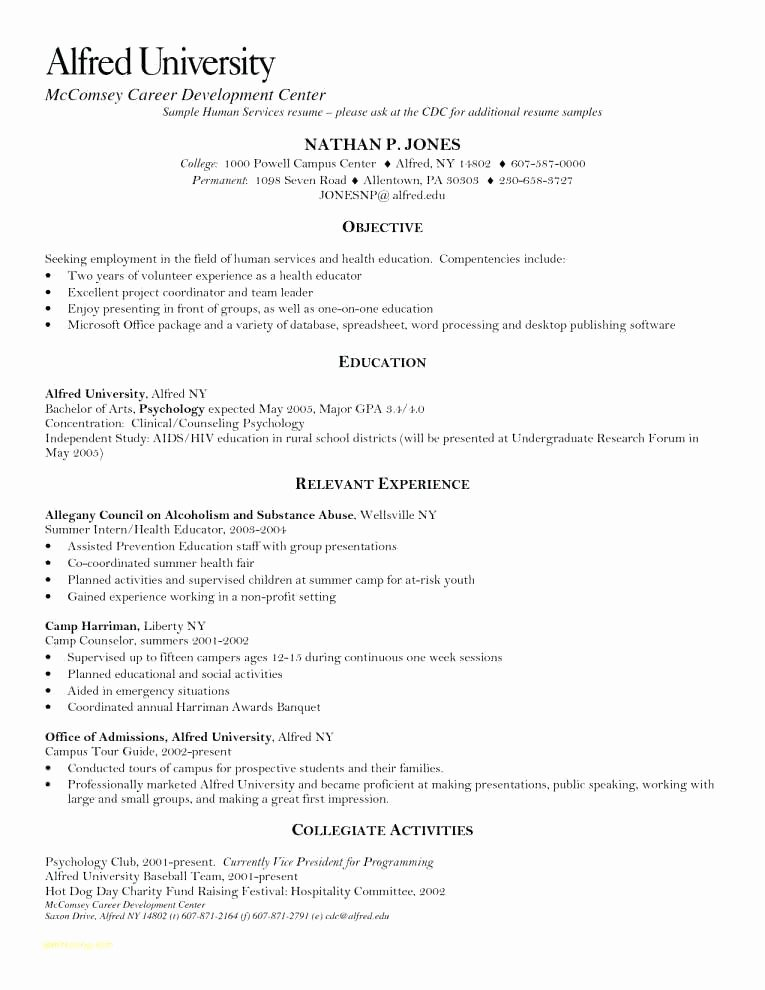Resume Professional Writers Reviews – Mkmafo