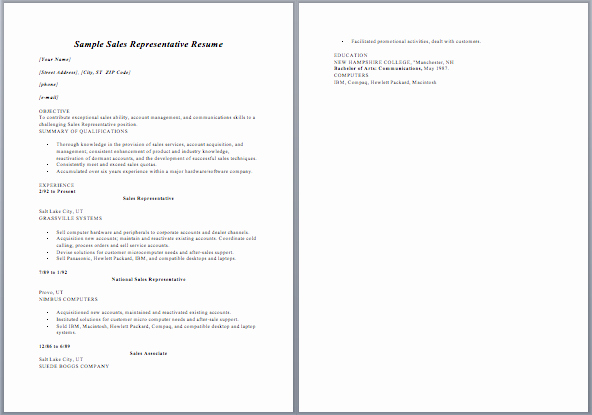 Resume Salesperson Position