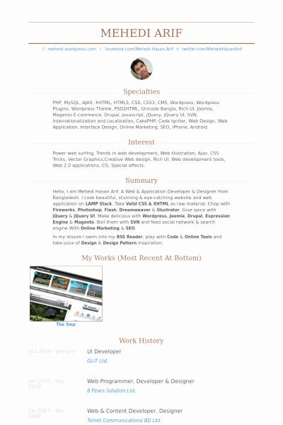 Resume Sample for Ui Developer