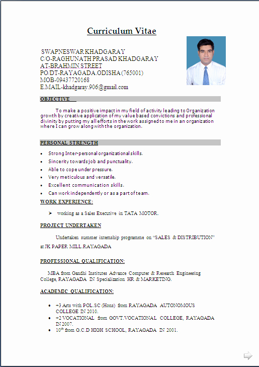 Resume Sample In Word Document Mba Marketing & Sales