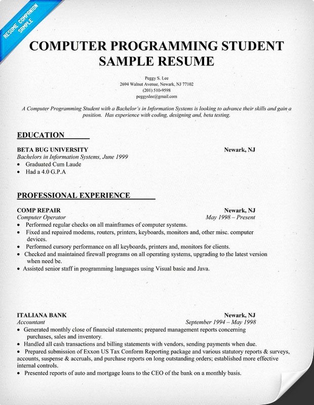 Resume Sample Puter Programming Student