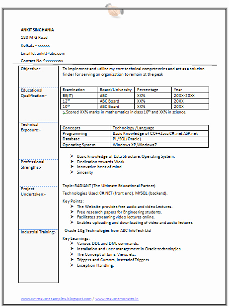 Resume Samples for Information Technology for Students