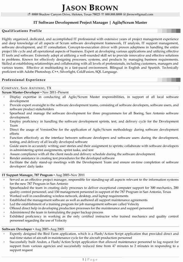 Resume Samples for Information Technology Success Code
