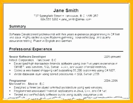 Resume Summaries Examples Samples Resume Summary Sample