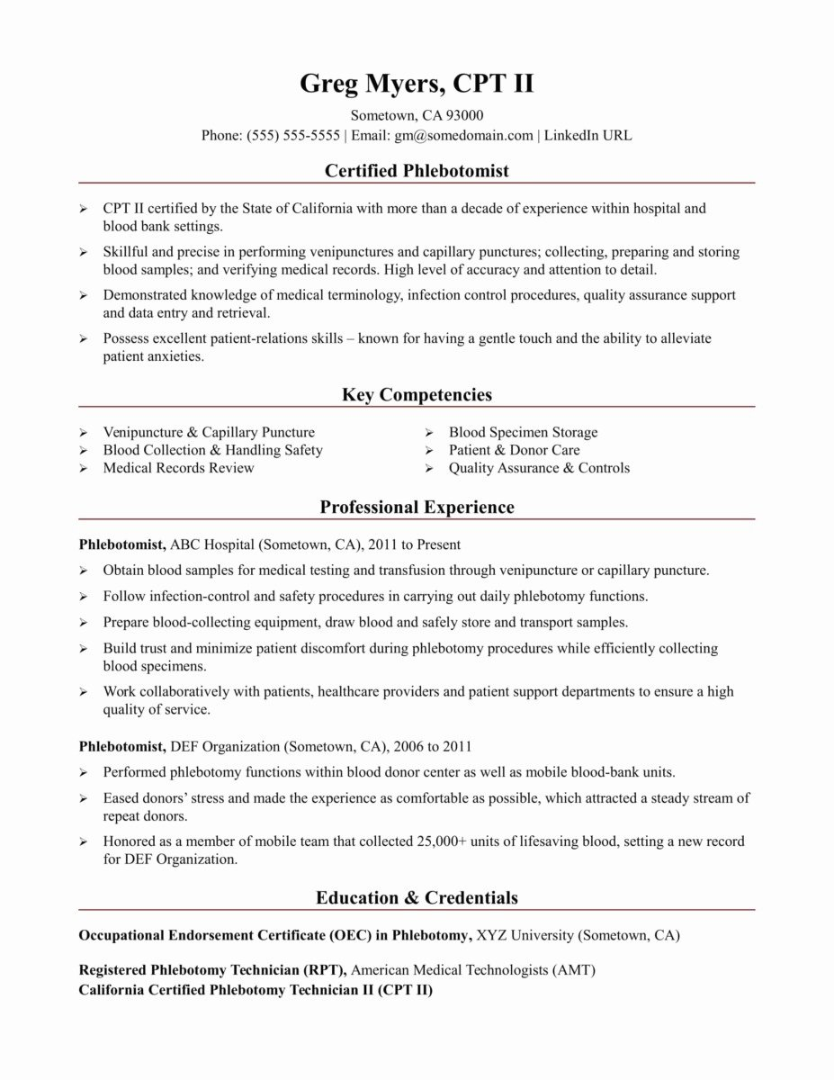 Resume Summary Examples Entry Level Download Resum for