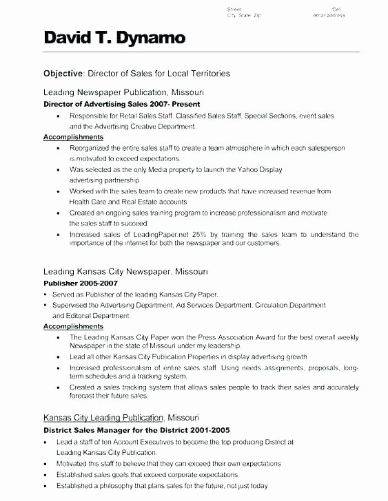 Resume Summary Section Examples Resume Summaries Samples