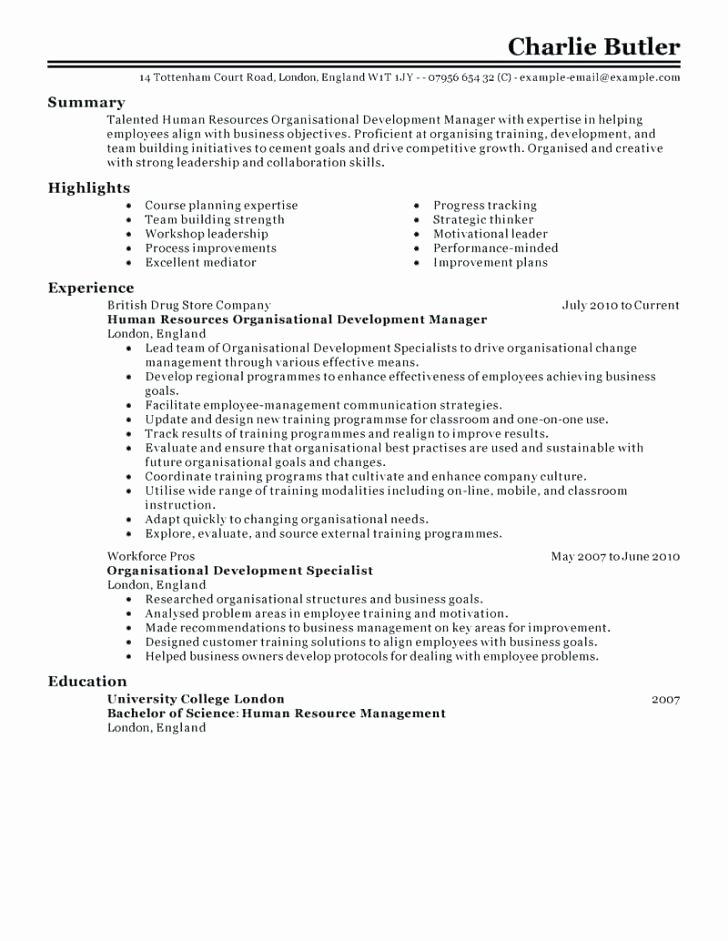Resume Summary Section – orlandomoving
