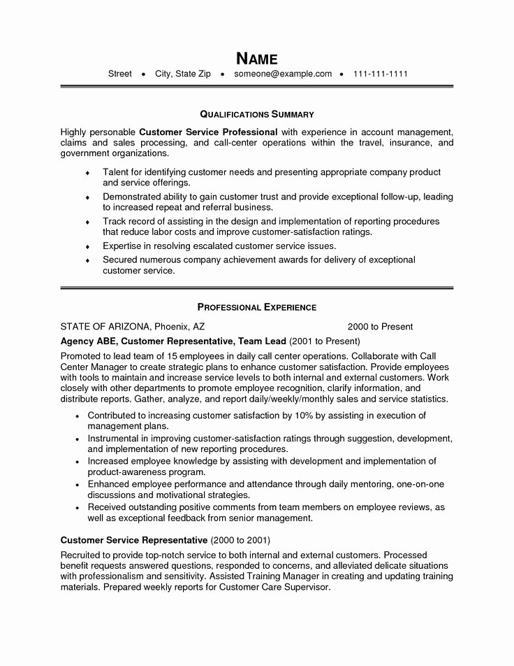 Resume Summary Statement Examples Customer Service Best