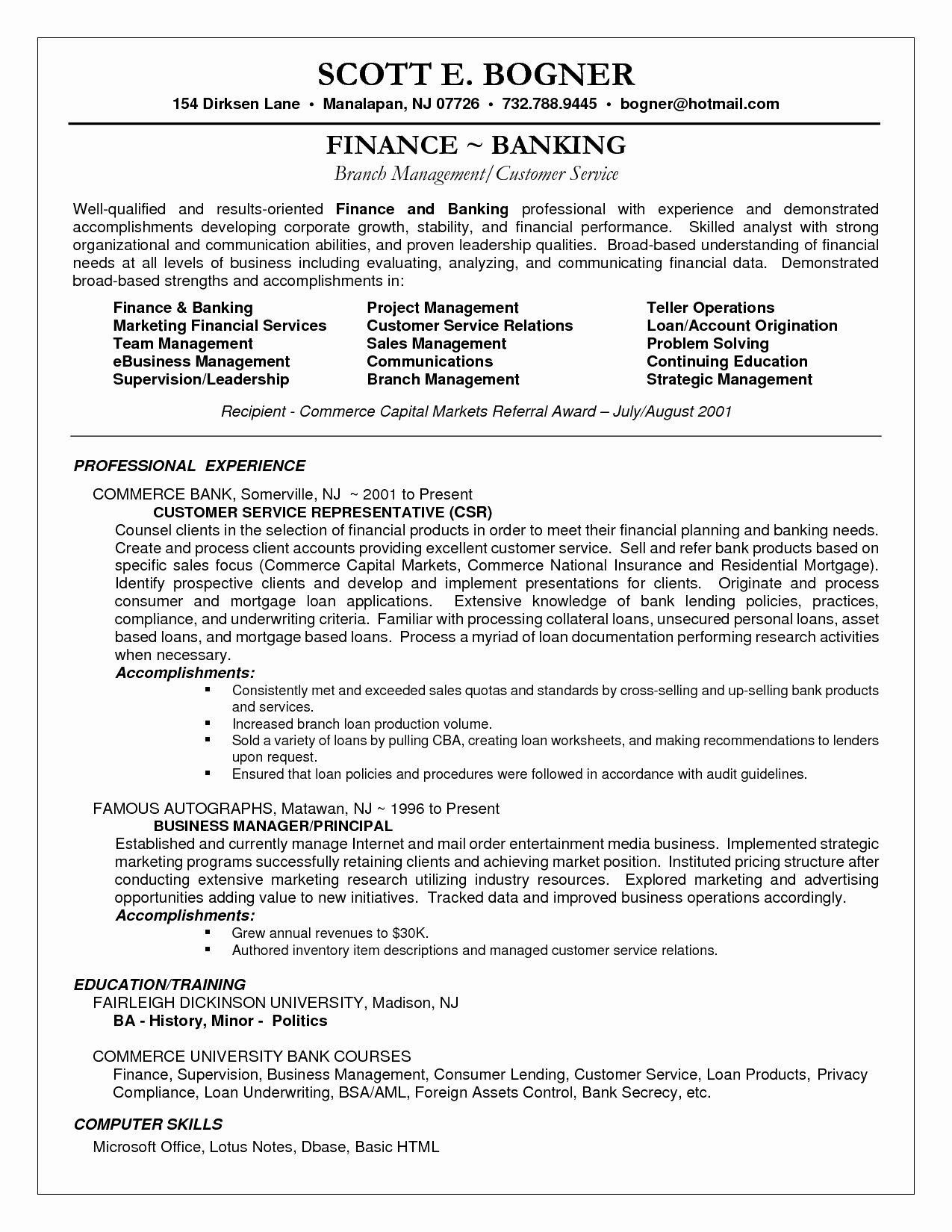 Resume Summary Statement Finance